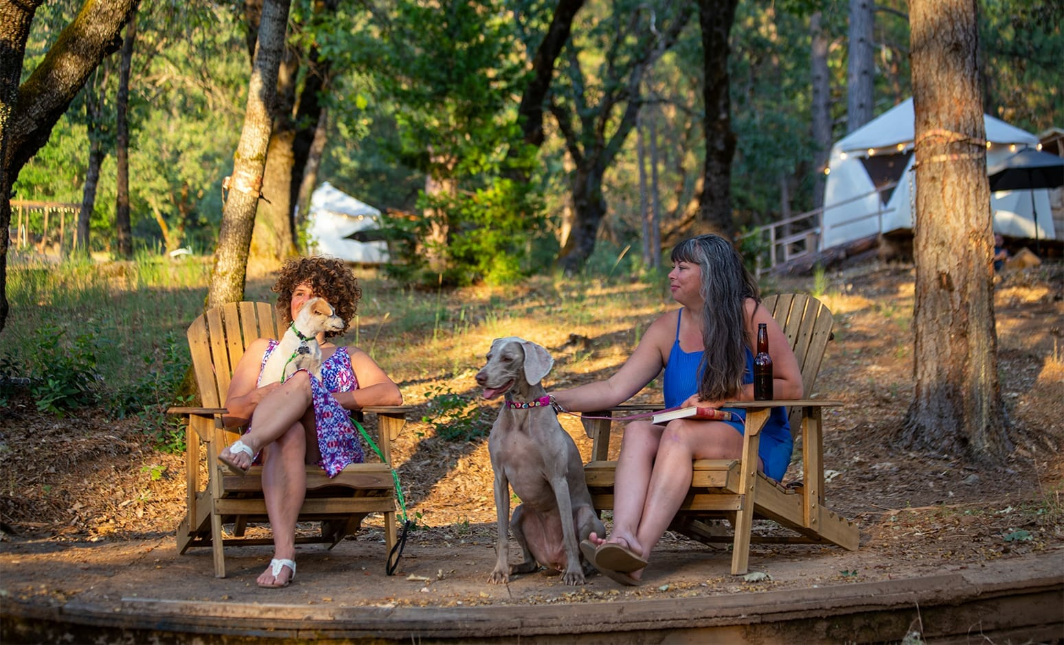 Two women sitting on the outdoor reclined chairs with two dogs
